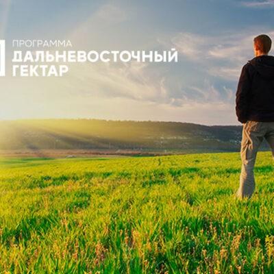 6,5 тысяч участников программы «Дальневосточный гектар» задекларировали использование участков