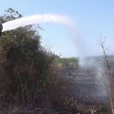 Сразу в трех сирийских провинциях идет борьба с природными пожарами