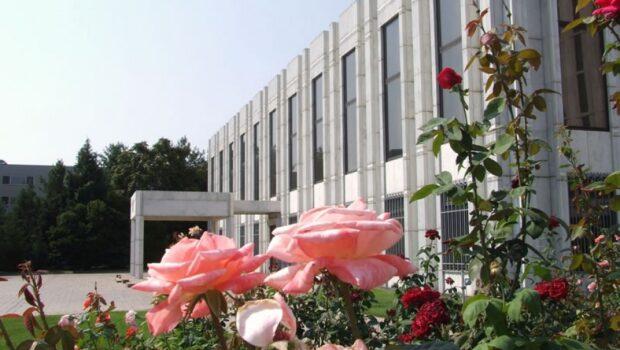Посольство РФ отвергло попытки США обвинить Россию в кибератаках