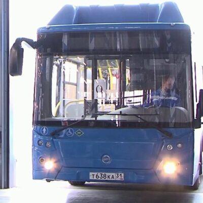 В российских регионах новые автобусы и троллейбусы приходят на смену транспорту, отслужившему свой срок