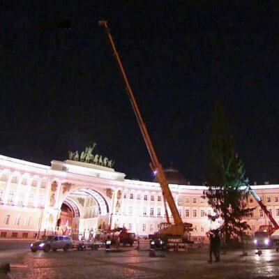 На Дворцовой площади в Санкт-Петербурге установили главную городскую новогоднюю ель