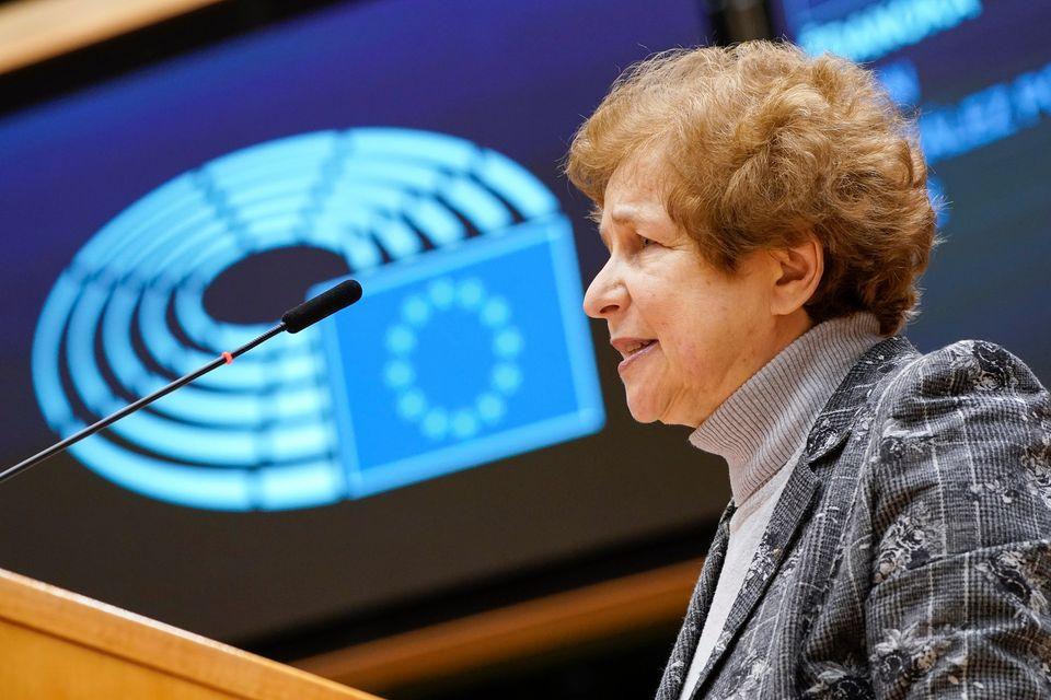 В Европарламенте призвали наделить неграждан правами граждан ЕС