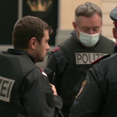 Австрийская полиция продолжает расследование теракта, совершенного почти сутки назад в Вене