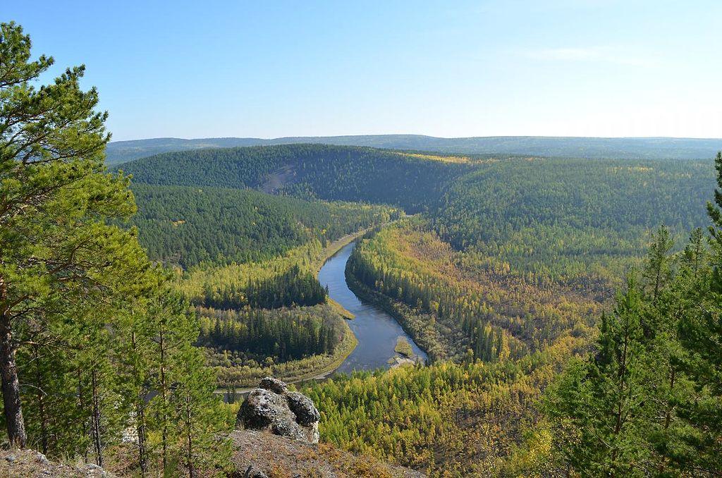 Всемирный центр мамонта создадут в Якутии