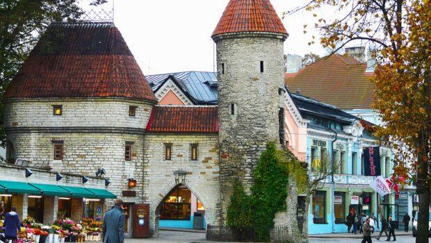 В России раскритиковали заявление из Эстонии о территориальных претензиях