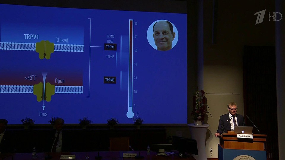 Нобелевскими лауреатами по физиологии и медицине стали Дэвид Джулиус и Ардем Патапутян