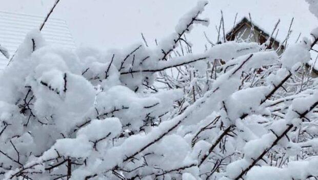 Сильные снегопады накрыли Швейцарию, Италию, Испанию, Австрию и Чехию