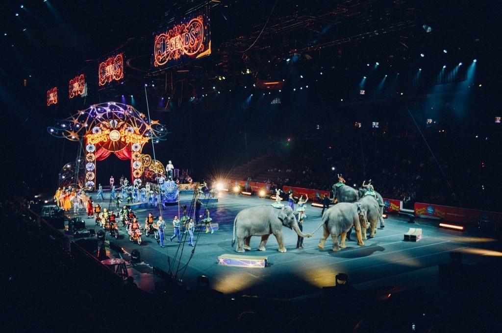 Россияне завоевали награды на цирковом фестивале в Китае