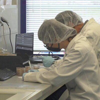 Италия готовится начать выпуск «Спутника V»