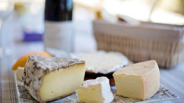 Российские производители сыра стали победителями международных конкурсов
