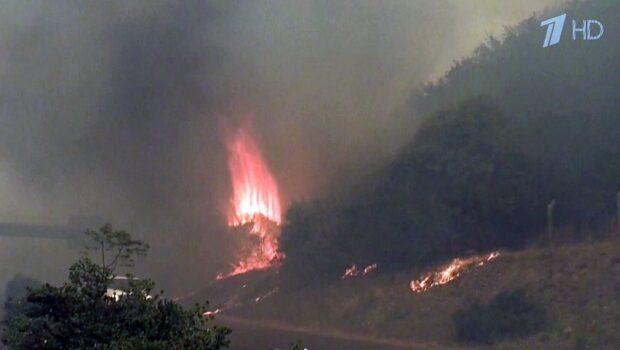 В Южной Африке уже второй день бушует пожар у подножья знаменитой Столовой горы