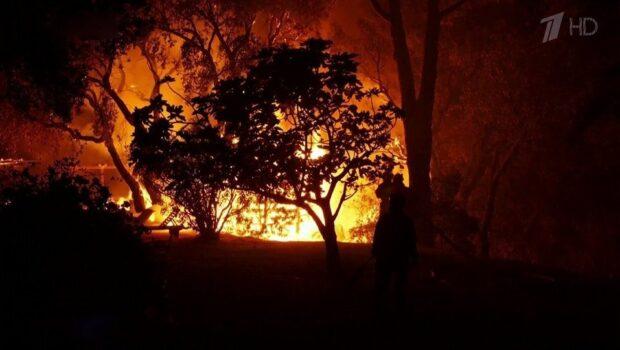 Природные пожары почти добрались до Французской Ривьеры